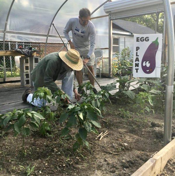 Gardening with Harvey at the Fresh Start Children's Garden