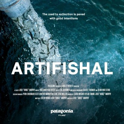 "Environmental Justice Film Series: ""Artifishal: The road to extinction is paved with good intentions"" @ Berrien Unitarian Universalist Fellowship"
