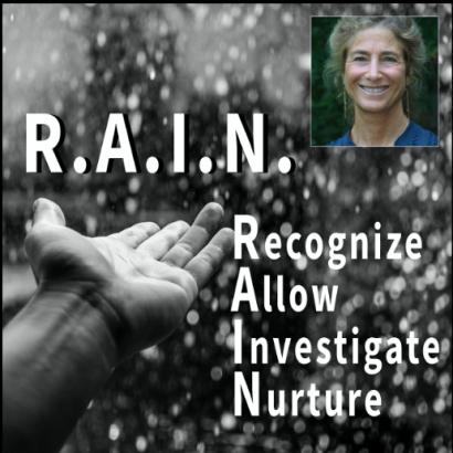 "Mindfulness Workshop: ""R.A.I.N. Meditation Practice"" @ Berrien Unitarian Universalist Fellowship"