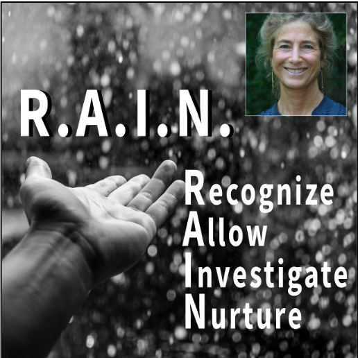 """Mindfulness Workshop: """"R.A.I.N. Meditation Practice"""""""