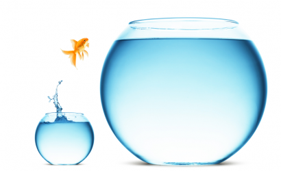 """Sunday Service: """"Like a Fish Out of Water: Thresholds in Consciousness"""" @ Berrien Unitarian Universalist Fellowship"""
